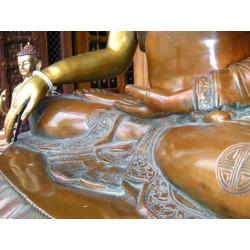 8x8 cm Turquesa 2 flores amarillas